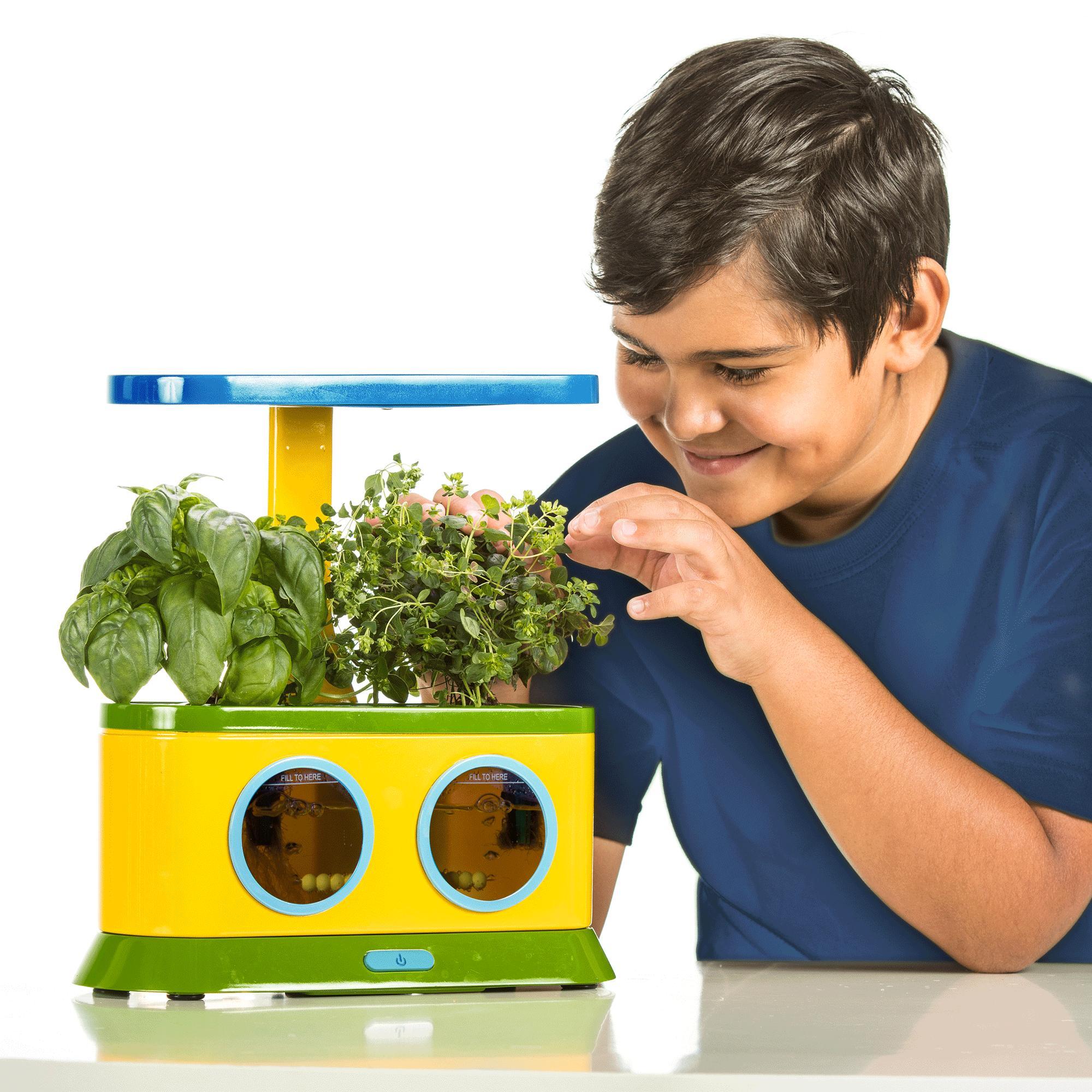Amazon.com : AeroGarden Herbie Kid's Garden with Pizza ...