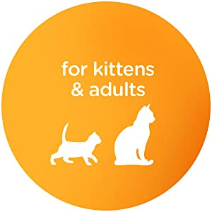 Hairball Control, Hairball Formula, All Life Stages, Kitten Food, New Kitten, Senior Cats, Kitty