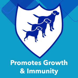 Essential vitamins, minerals and antioxidants promote growth & immunity in your pet