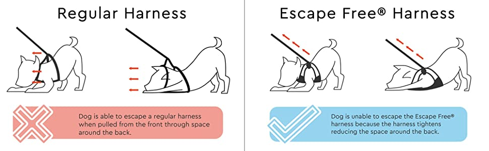 Amazon Gooby Escape Free Easy Fit Dog Harness For Dogs That