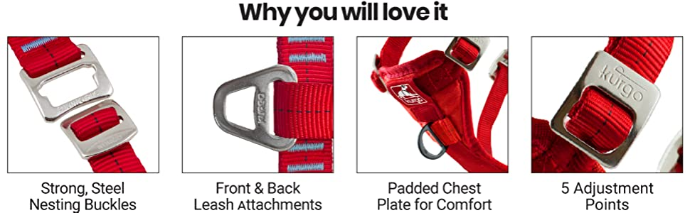 Steel Buckles, 2 Point Attachment, Padded, Adjustable