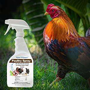 all poultry all natural vitamins herbs 1 vials no  chemicals hatching spray
