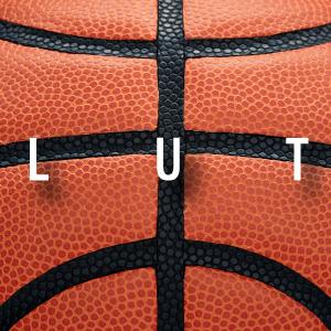 basketball; basketballs; wilson evolution basketball; evolution basketball;