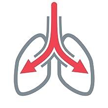 Radon enters the respiratory system.