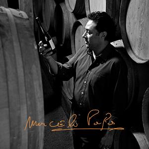 Winemaking; Casillero del Dablo; Marcelo Papa