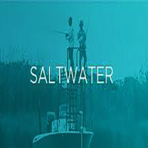 St Croix SALTWATER RODS