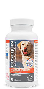 Cosequin Maximum Strength Plus MSM and HA Chewable Tablets for Joint Support