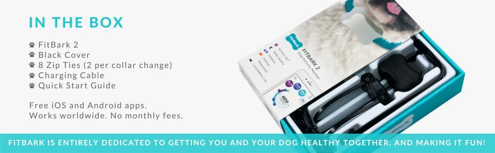 dog packaging, dog box