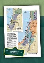 Large Print LASB Life Application Study Bible NLT New Living Translation understandable Maps charts