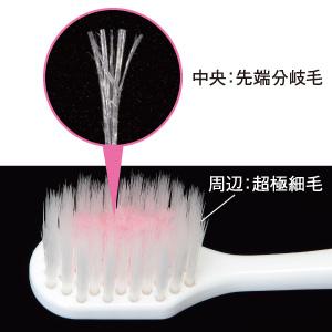 ハミガキ剤を「保持」して「送達」する特別な植毛