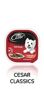 cesar classics wet dog food beef recipe, soft dog food, food for dogs, cesars dog food, westie food
