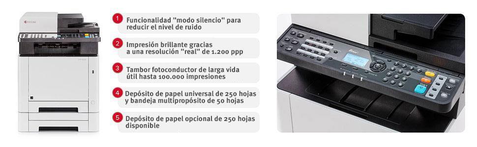Moderno Larga División Hojas De Trabajo Imprimibles Galería - hojas ...