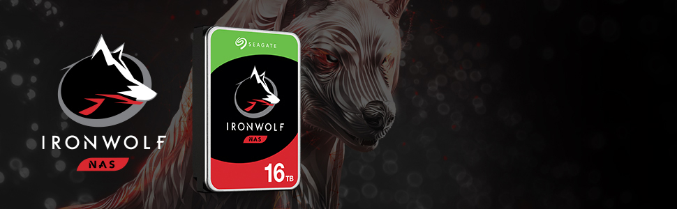 Seagate IronWolf intneral harddisk
