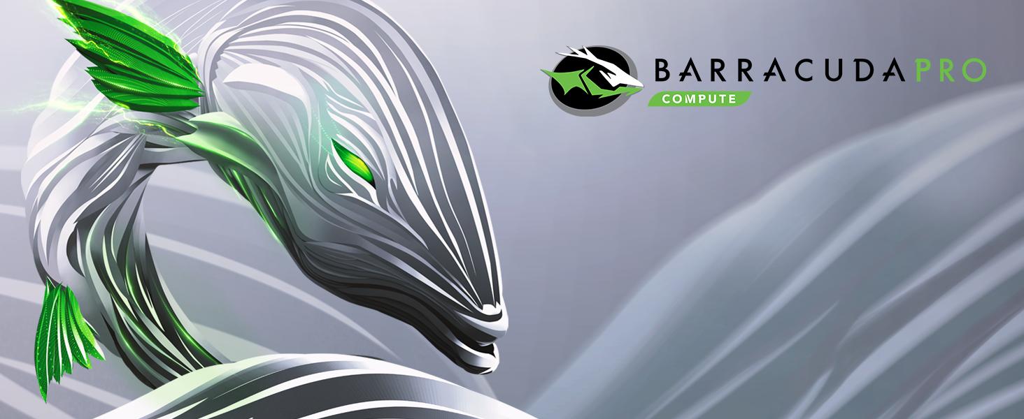 Barracuda Pro 14TB