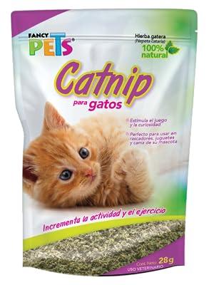 CATNIP P/GATOS 28 GRS