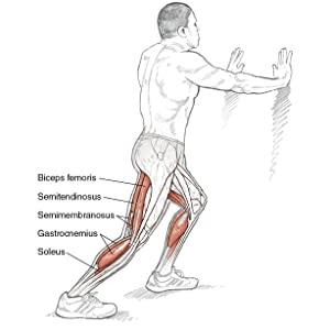 running anatomy, standing calf stretch, injury prevention