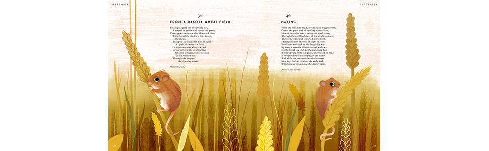 nature; nature books; nature poems; poems for kids; poetry for children; childrens poetry; poetry
