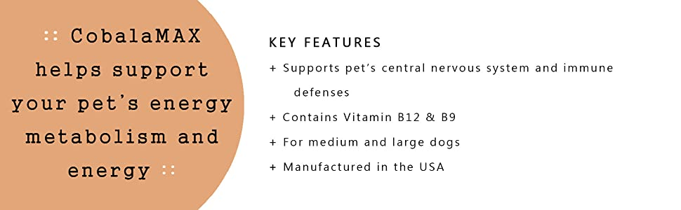 small dogs cats supplement b12 b9 central nervous system immune defenses