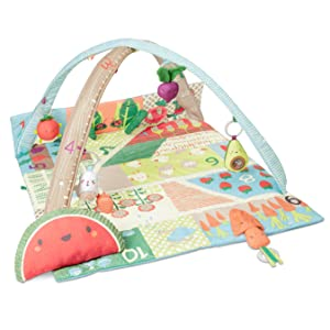 Skip Hop, Baby, Infant Toys, Musical Toys, Baby Toys, Activity Gyms