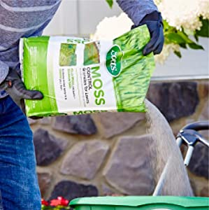 Amazon Com Scotts Moss Control Granules For Lawns 5
