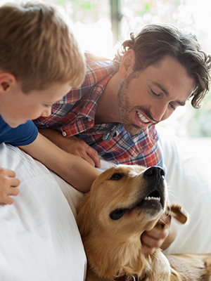 Father and son playing with golden retriever