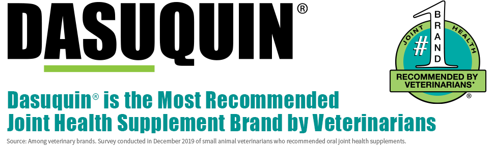Dasuquin Logo: The #1 Joint Health Brand recommended by veterinarians