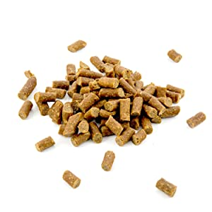 Amazon.com : Dingo Breakfast Bites Snack For All Dogs, 10