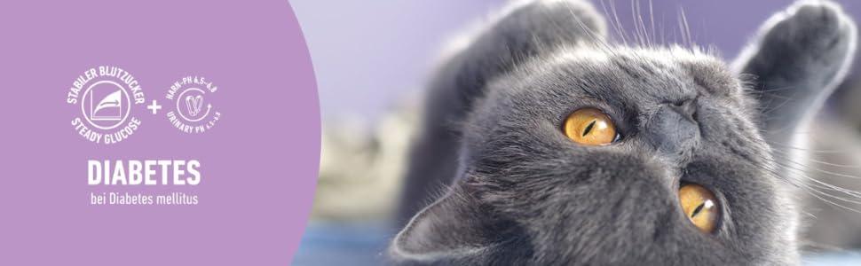 animonda Integra Protect Diabetes para gatos, comida dietética para gatos, pienso para gatos con diabetes mellitus, 1200 g