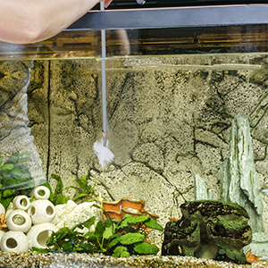 Aquarium slangborstel