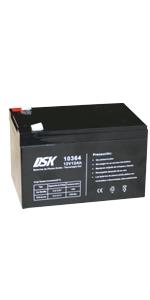 DSK 10365 - Batería Plomo tecnología Gel 12V 17 Ah, Negro ...