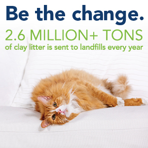 cat litter, natural cat litter, paper litter, paper cat litter