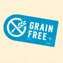 Grain free cat food recipes