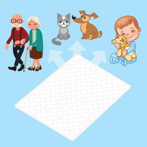 Can The Pads Be Used For Toilet Training, Pets Pads And Bed Wetting?