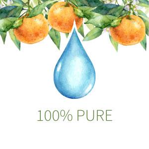 garden of life sweet orange essential oils