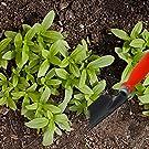 Ease Of Gardening