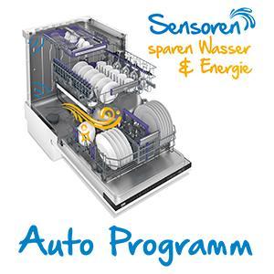 Auto Programm