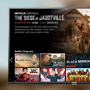 Official Netflix