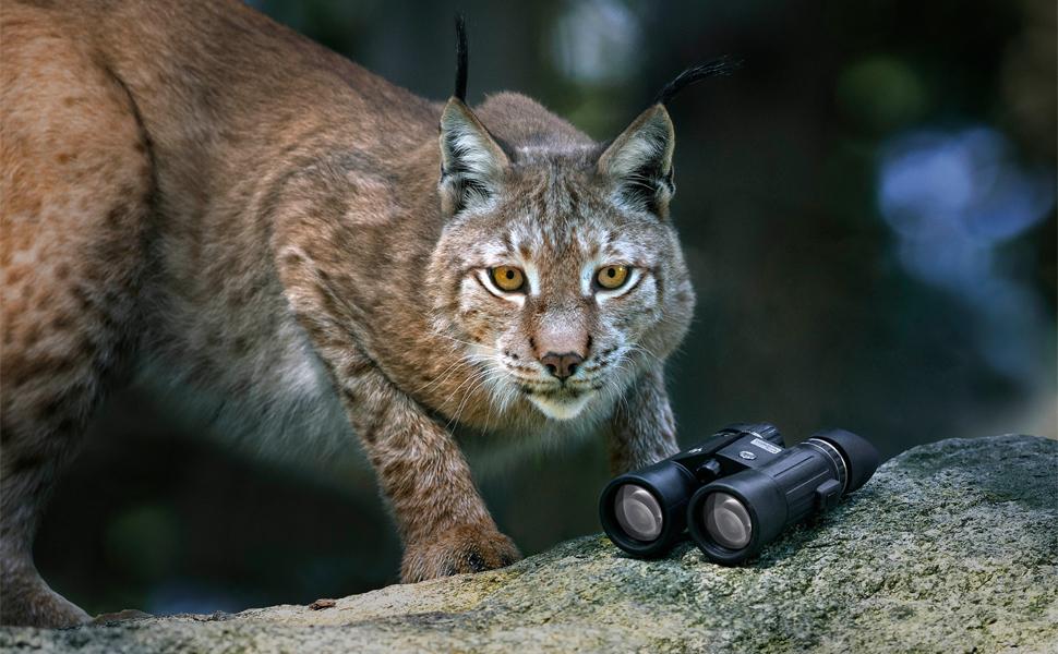 Steiner Wildlife Xp 8x44 Fernglas Vielseitig Kamera