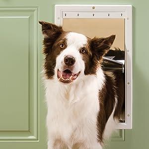 dog door in door; exterior door; interior door; door for dogs; door for cats; freedom; let dog out