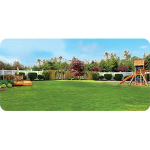 Cutter Backyard Products