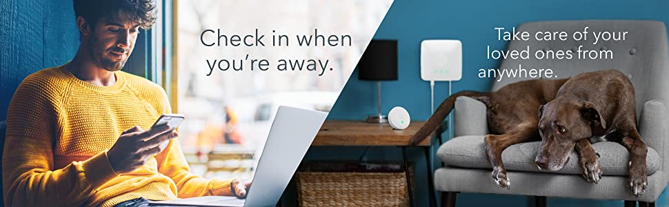 airthings hub, smart indoor air quality, indoor air test
