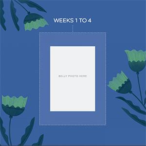 pregnancy journal, pregnancy journal, pregnancy journal, pregnancy journal, pregnancy journal,