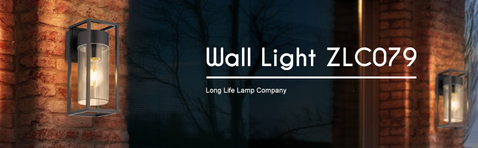 ZlC079 outdoor wall light elegant design classic stylish wall light clear diffuser ip rated