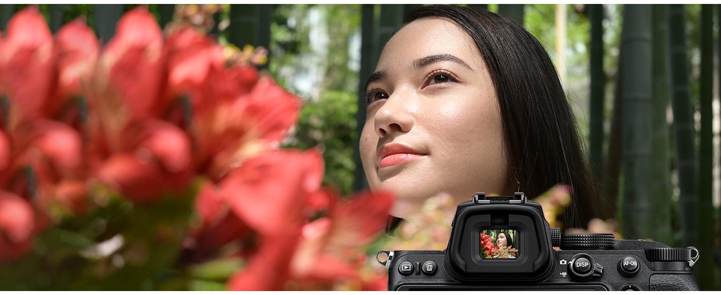 EVF viewfinder high resolution