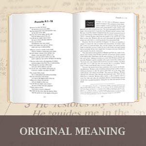 Original Meaning