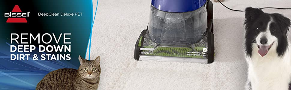 carpet shampooer; shampoo for pet urine; pet stain remover; bissel; odor remover; carpet cleaner