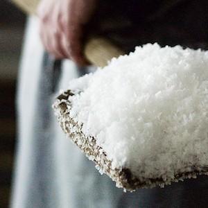 harvest sea salt traditional natural saltmaker salt maker