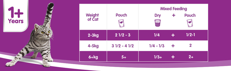 Whiskas, Whiskas cat food, wet cat food, cat food pouches