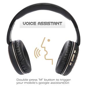 Voice Assistance Feature