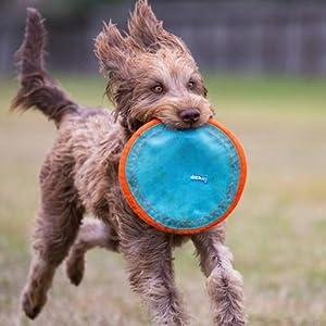 Chuckit Paraflight Flyer Dog Toy Large